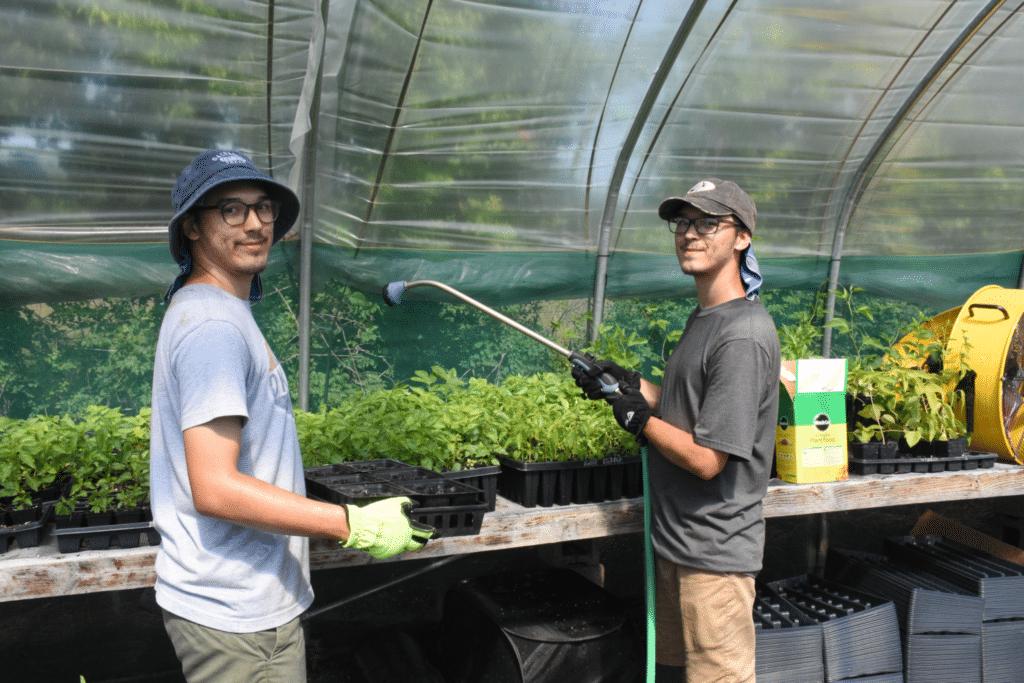 Euchee Butterfly Farm greenhouse